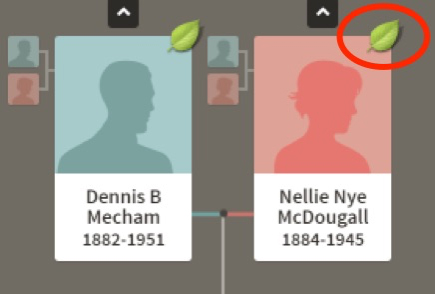 Learn how to use Ancestry.com hints in your family history work.