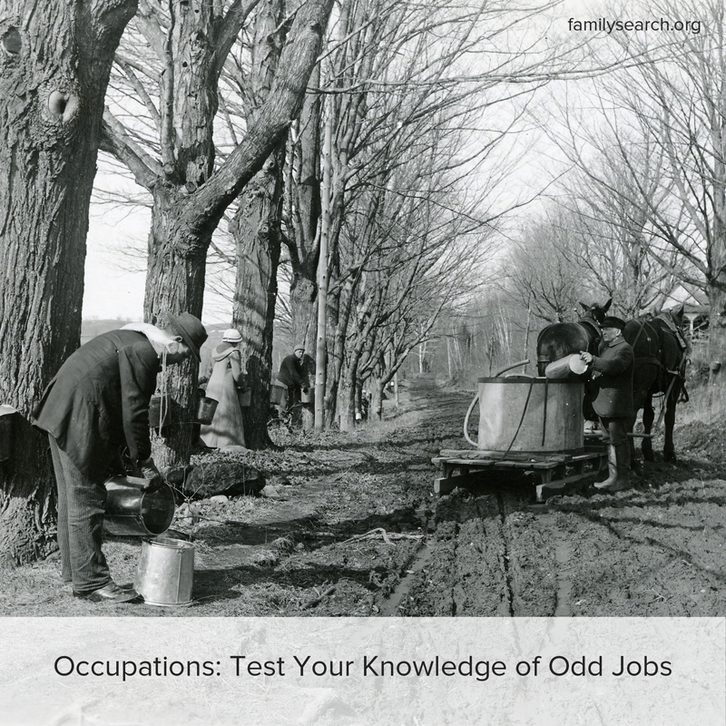 Test your knowledge of extinct jobs your ancestors may have held.
