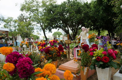 "Dia de los Muertos, or ""Day of the Dead,"" is a day to celebrate and remember family members and loved ones who have died."